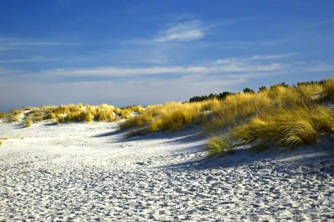 Dünen an der Ostseeküste